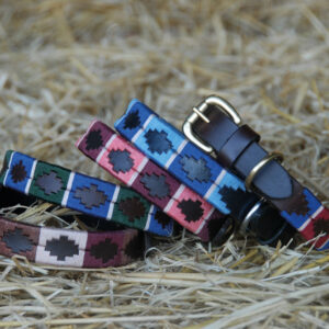 chukka-dog-collars-002