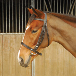 hunting-bridle-02