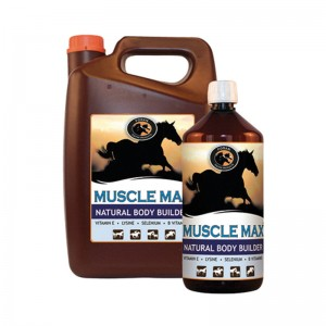 muscle-max-group-001